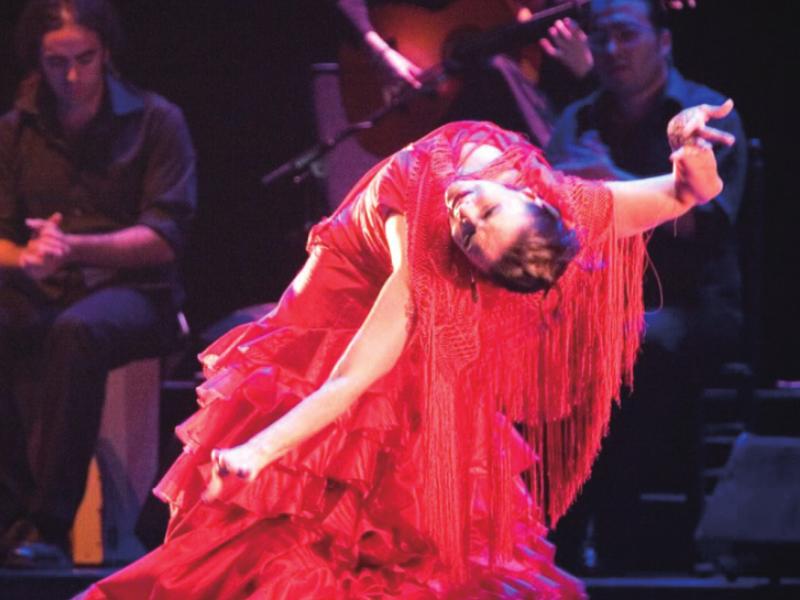 《Flamenco Live Jaleo》(现场版)